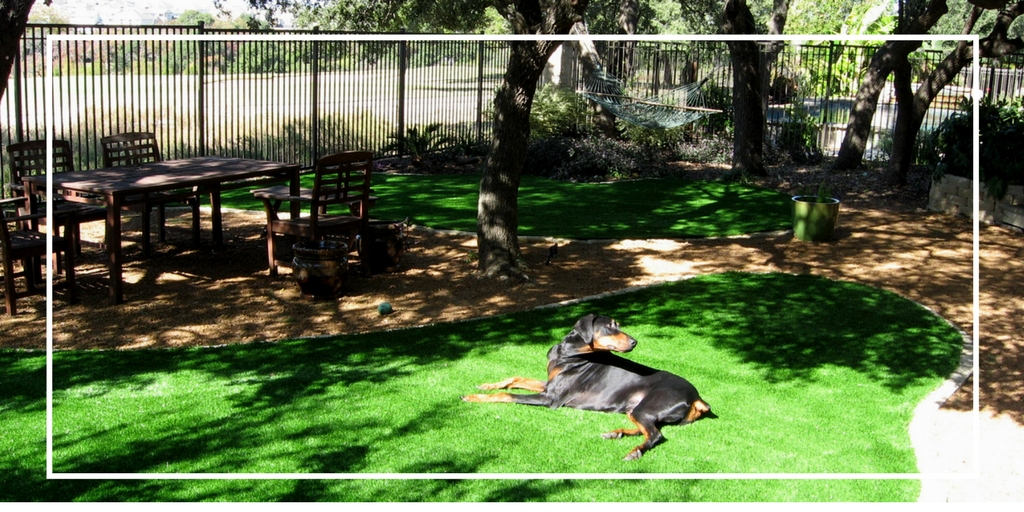 TwitterTexasCustomTurf (31)